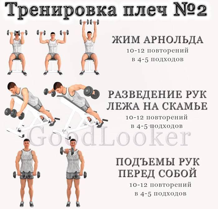 Программа тренировок на руки на массу
