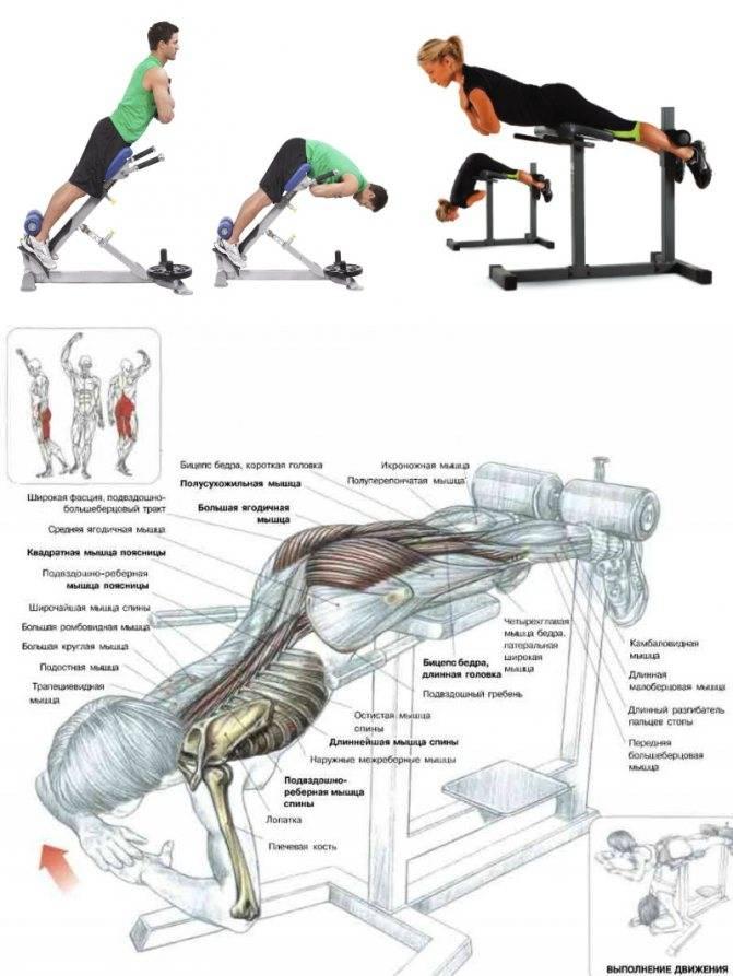 Как накачать спину в домашних условиях мужчине: качаем мышцы без железа подручными средствами