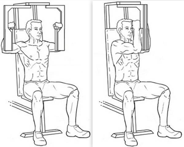 Сведение ног в тренажере: техника выполнения, какие мышцы работают, фото - tony.ru