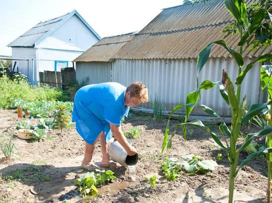 Чем можно перекопать огород. советы дачникам и огородникам
