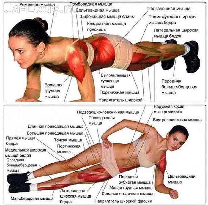 Боковая планка: техника исполнения супер упражнения