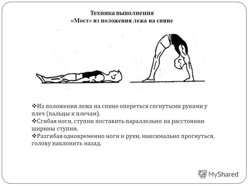 Мостик гимнастический, как правильно делать упражнение мост, польза и вред