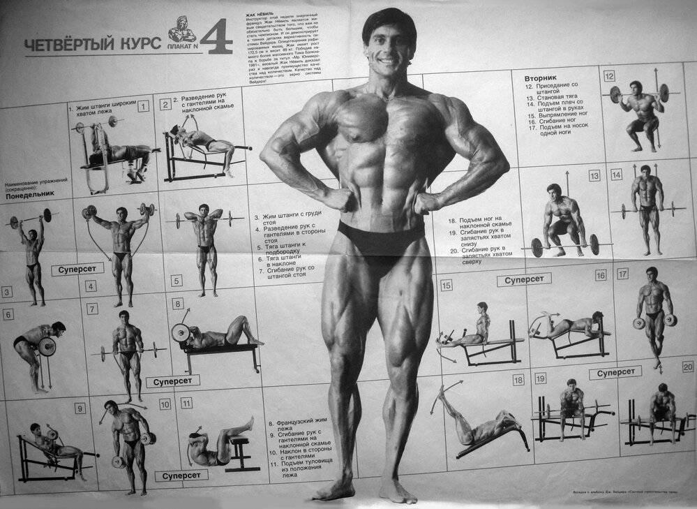 Тренировочные принципы джо уайдера | спорт и здоровье