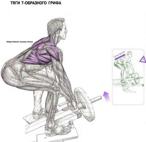 Становая тяга: виды, техника выполнения, нормативы и типичные ошибки