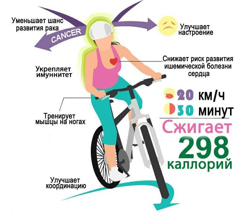 Велотренажер: польза и вред, занятий на нем, полезные советы