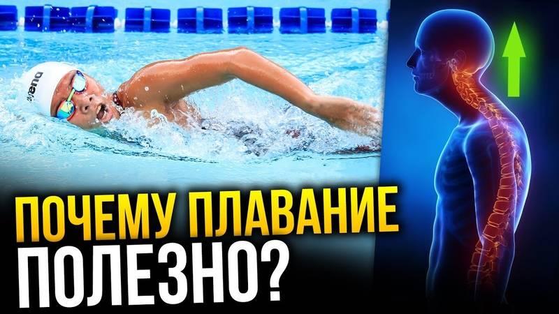 Почему болит голова во время тренировки и после бассейна » спортивный мурманск
