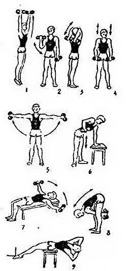 Программа упражнений с гантелями для женщин