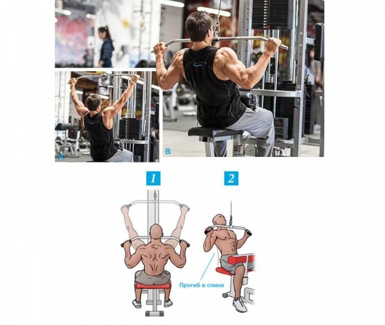 Тяга верхнего блока к груди – упражнение для мышц спины