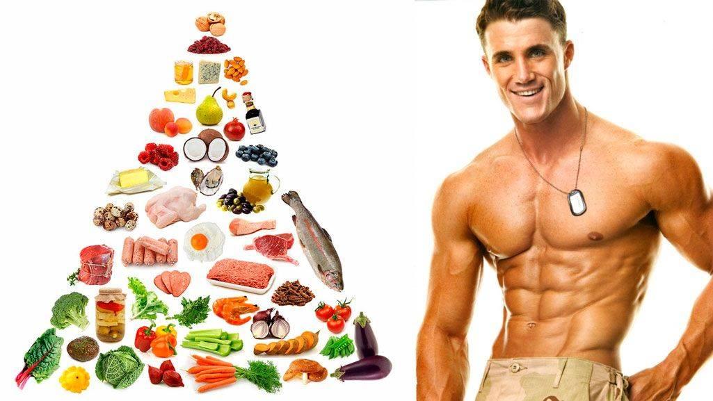 Набор сухой мышечной массы — программа тренировок и питания