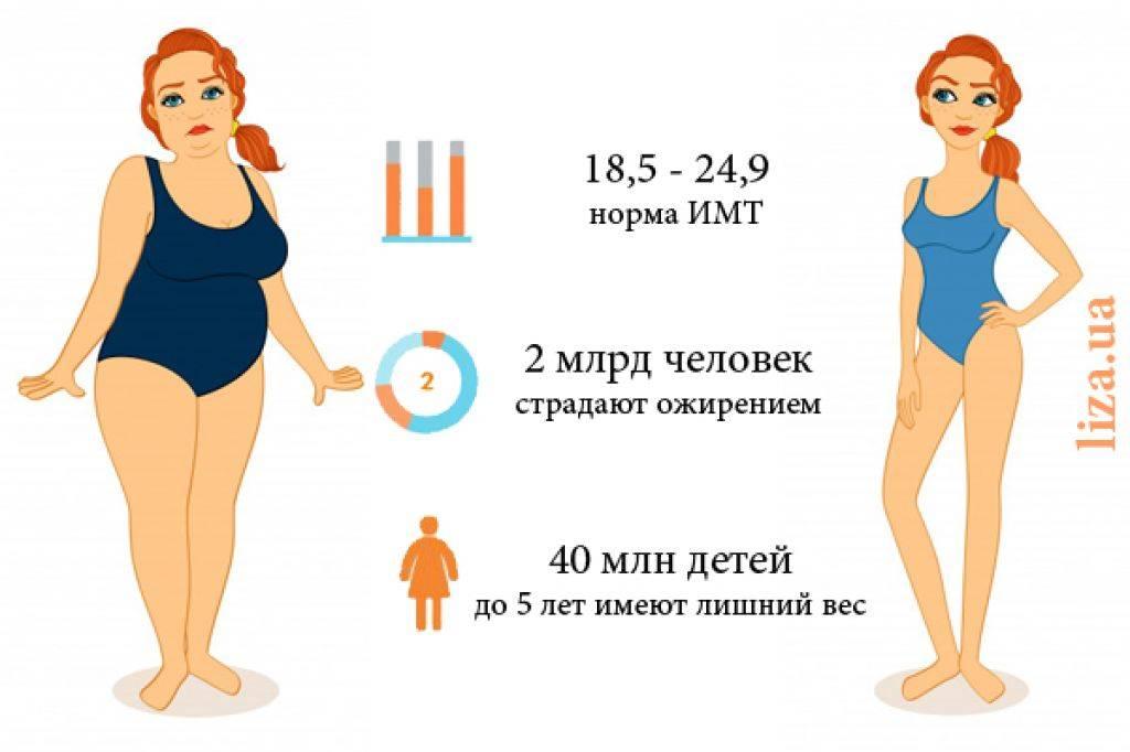 Как мы толстеем?