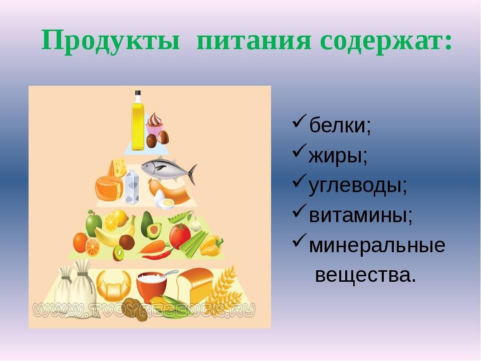 Рациональное питание и его значение для здоровья