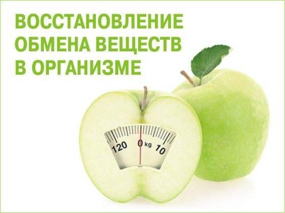 Нарушение обмена веществ: причины, симптомы, диагностика и способы лечения нарушений метаболизма