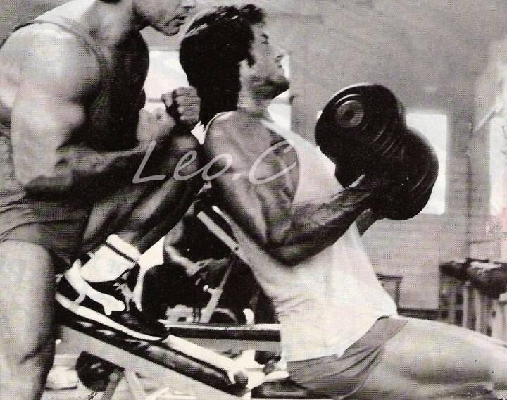 Легендарная программа тренировок сильвестра сталлоне