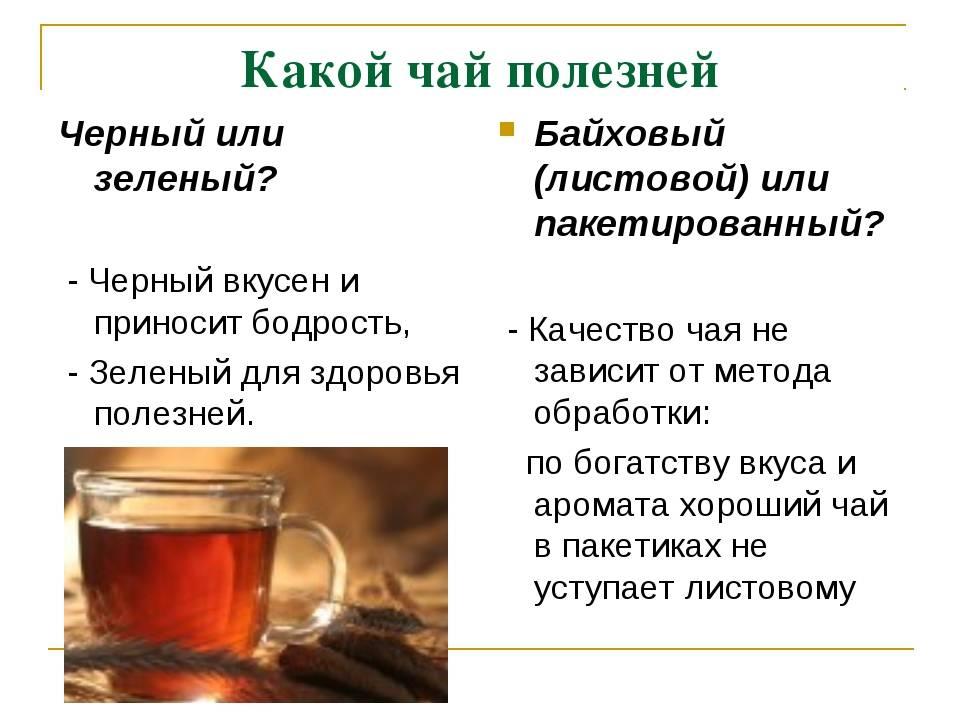 Так ли полезен зеленый чай - умная