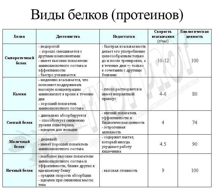 "Таблица ""функции белков"" (биология, 10 класс)"
