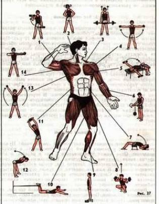 Лучшие упражнения с пружинным эспандером чтобы прокачать все тело