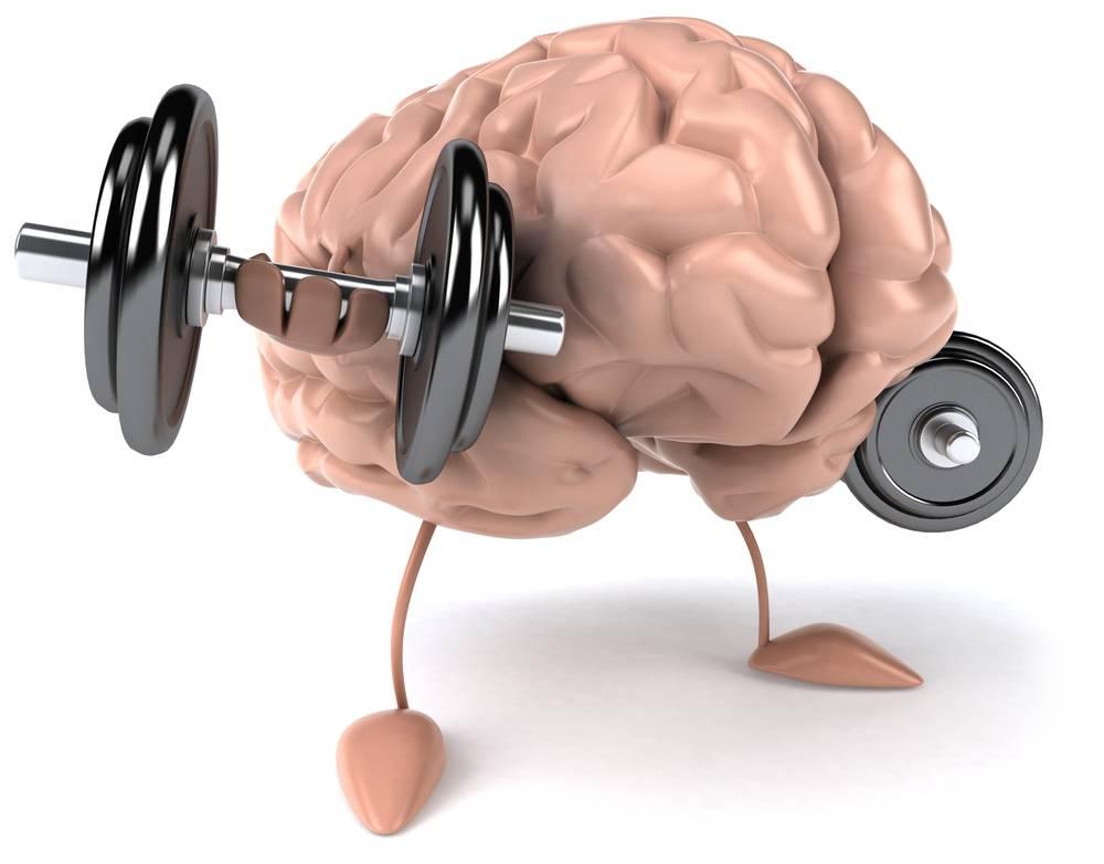 Потрясение мозга: как вернуться к учебе после майских