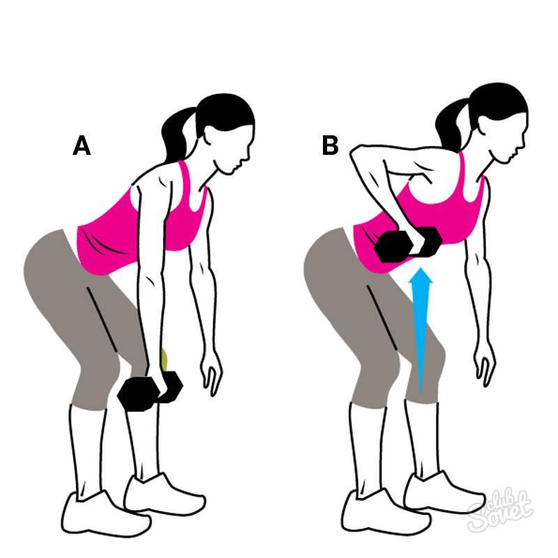 Прорабатываем руки: комплекс упражнений с гантелями для женщин
