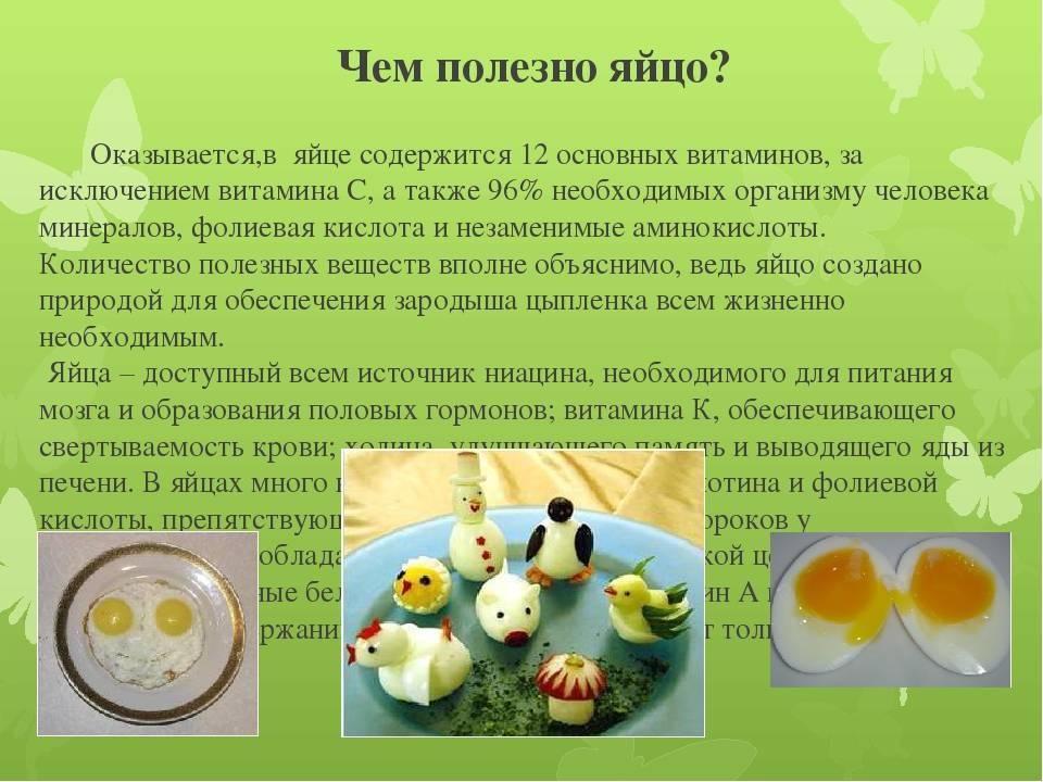 Разбираем состав куриного яйца: подробное описание и калорийность - питание - vitaminov.net
