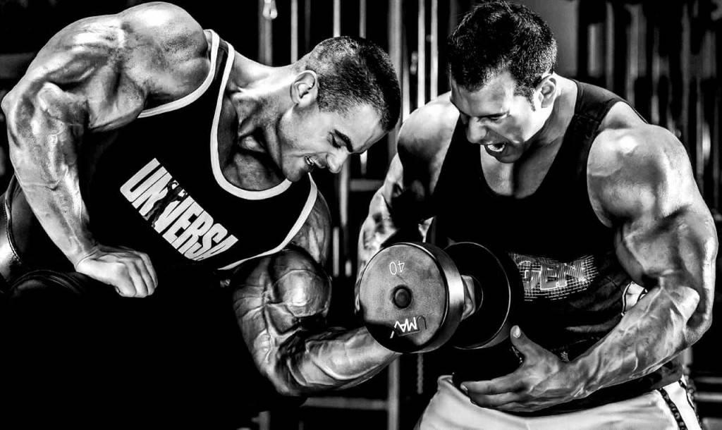 Читинг в силовых тренировках: зачем он нужен и как его применять?
