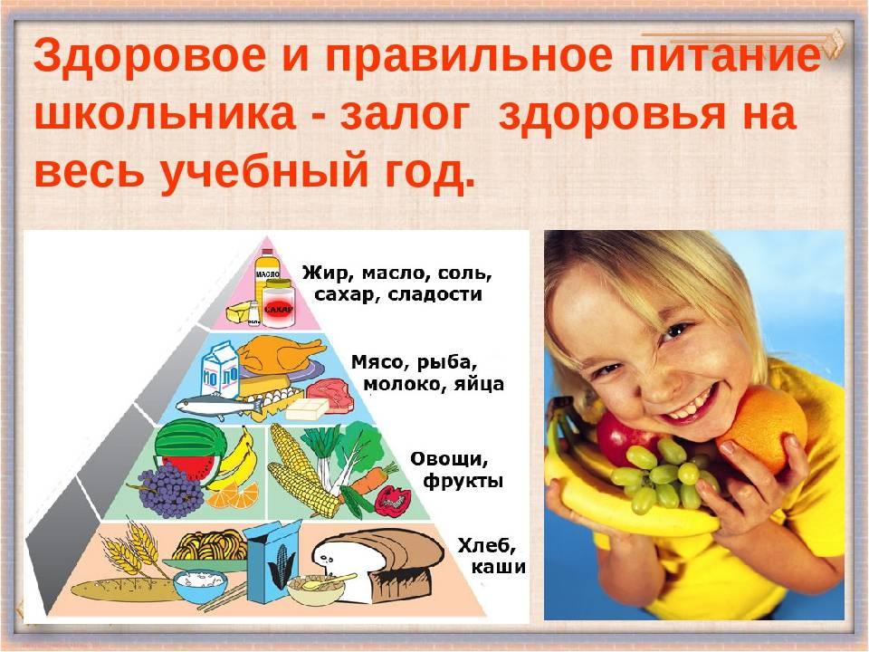 Правильное питание для здорового образа жизни: основы, меню
