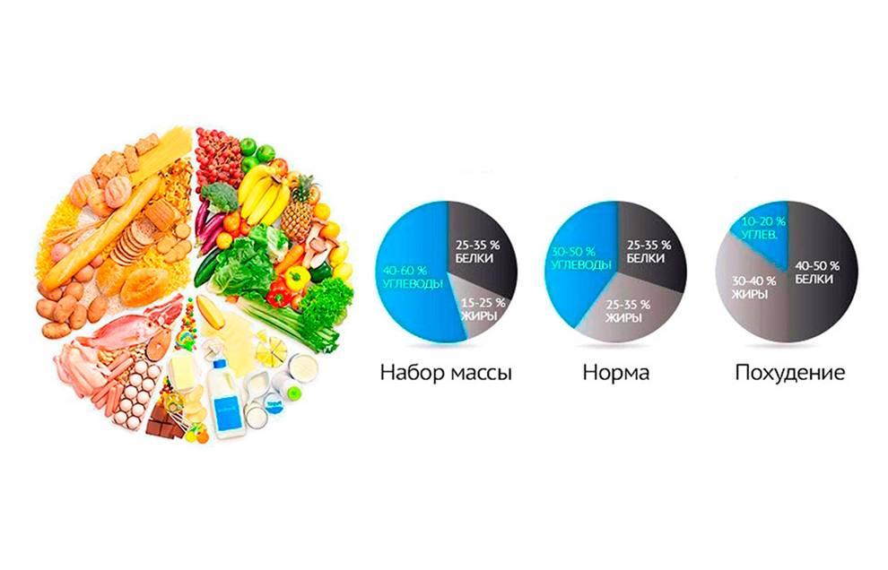 Список всех белковых продуктов для похудения в таблице