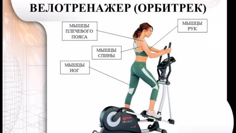 Как правильно заниматься на велотренажере начинающим