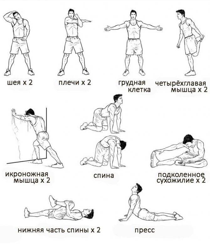 Заминка после тренировки - упражнения для заминки, для чего нужна заминка, заминка после силовой тренировки