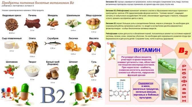 Витамины группы в в продуктах питания: таблица