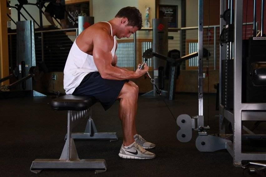 Упражнения на мышцы предплечья с собственным весом