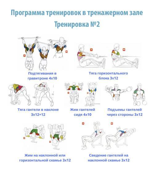 Самые полезные упражнения в тренажерном зале