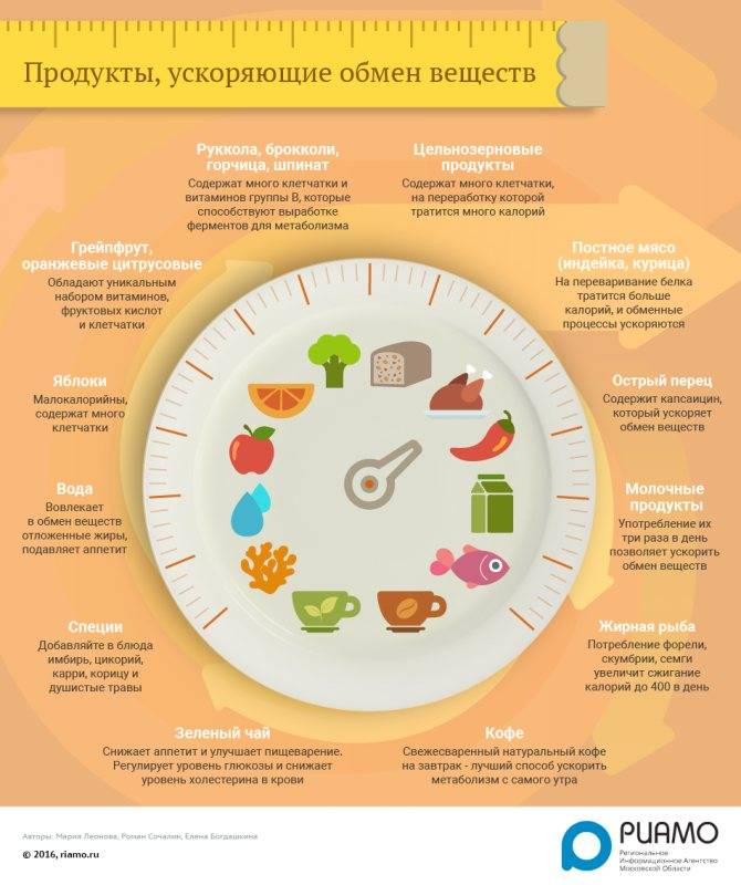 Продукты для обмена веществ | компетентно о здоровье на ilive