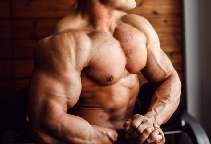 Гипертрофия мышц - что это такое и как ее добиться?