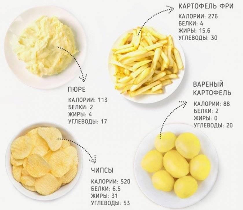 Картофель варёный в мундире — сколько углеводов (на 100 грамм)
