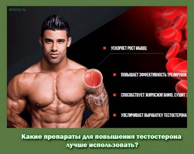 Режим силовых тренировок, гормоны и рост мышц