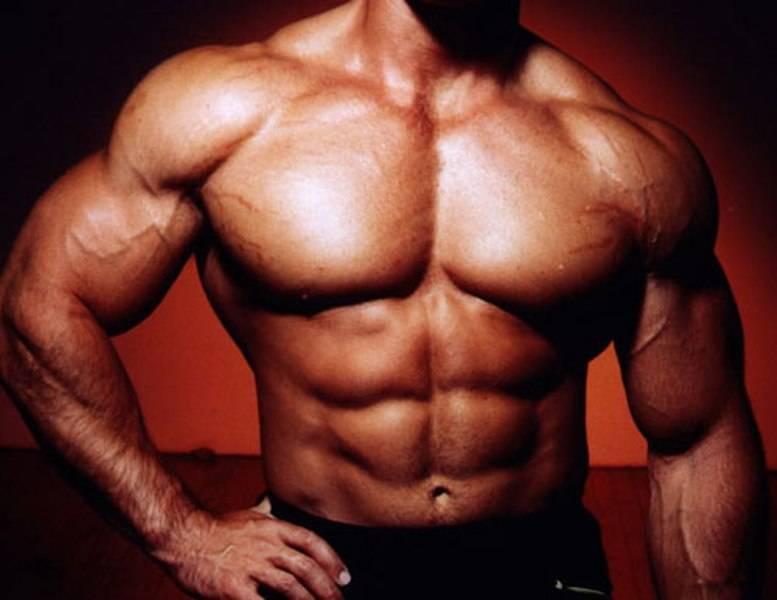 Гипертрофия мышц —что это? тренировки на массу —как запустить рост мышц?