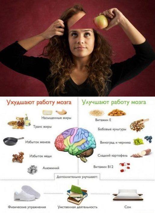 Продукты для мозга: список полезных и вредных для мозговой деятельности, рекомендации врачей