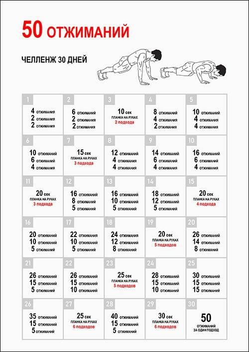 Как накачать пресс за 30 дней: таблица для девушек