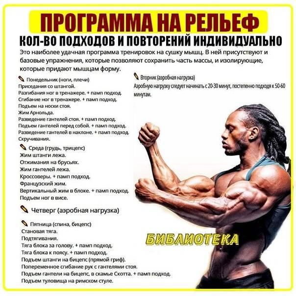 Программа тренировок для эндоморфа