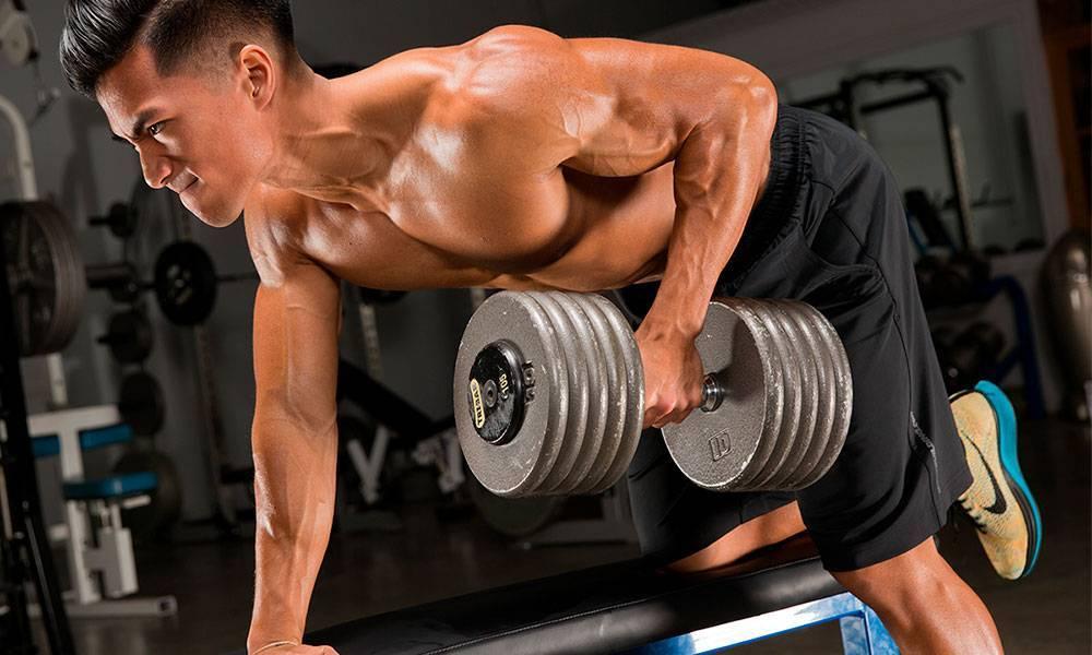 Как накачать мышцы спины: упражнения в тренажерном зале на все группы мышц