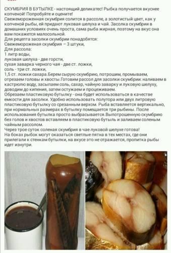 Скумбрия в луковой шелухе по самому вкусному рецепту