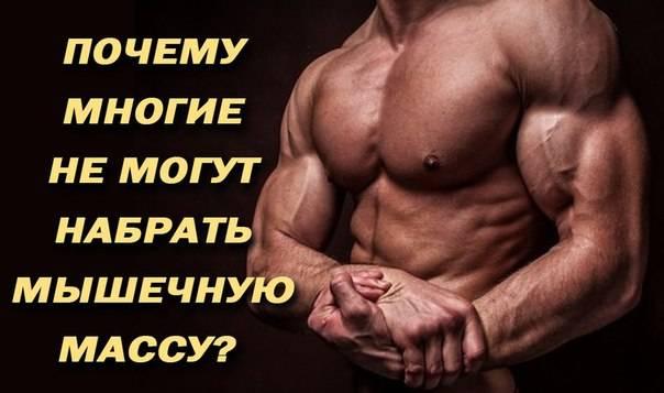 Что поможет укрепить мышцы рук? самые эффективные упражнения для рук, чтобы не висела кожа.