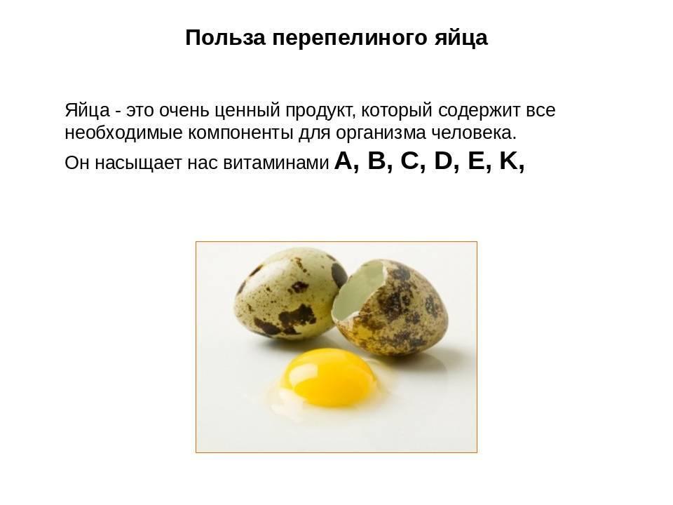 Сколько холестерина содержится в куриных, перепелиных и других яйцах?