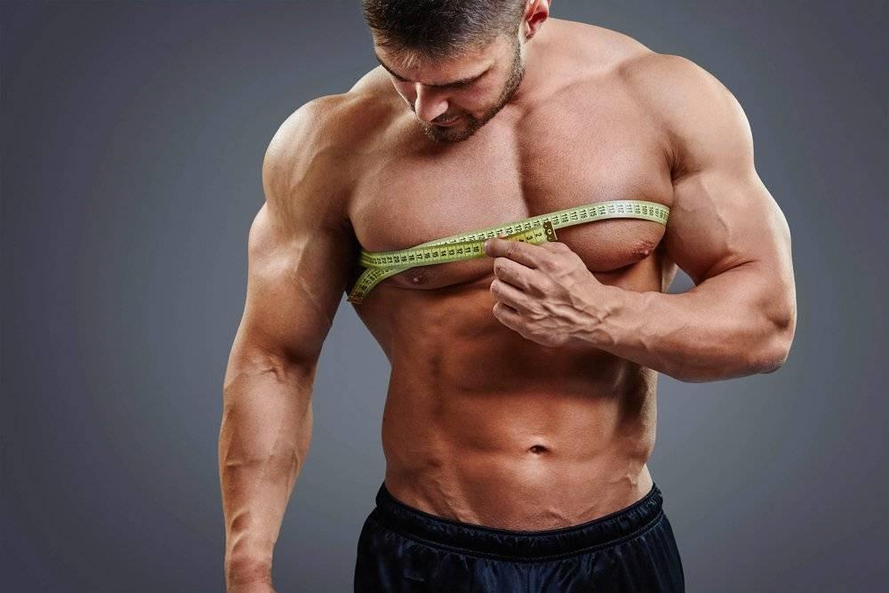 Почему не растут мышцы. топ 6 ошибок начинающих культуристов.