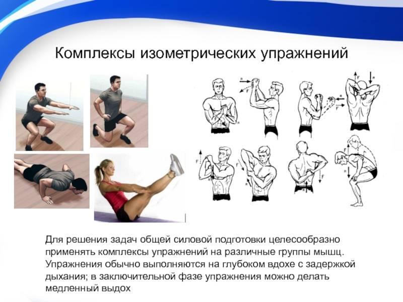 Динамическая растяжка: комплекс упражнений на все группы мышц