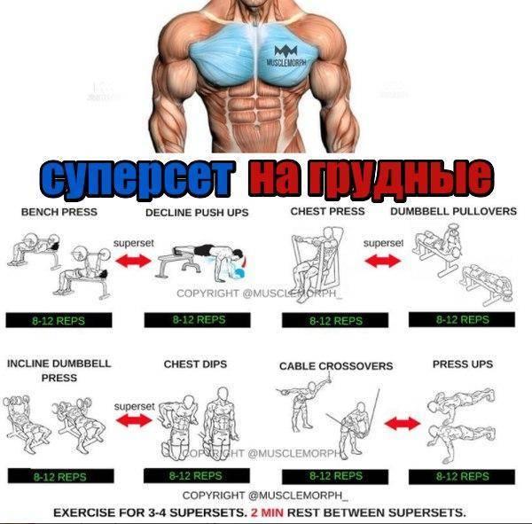Что такое дроп-сет и программы тренировок на мышцы и на плечи