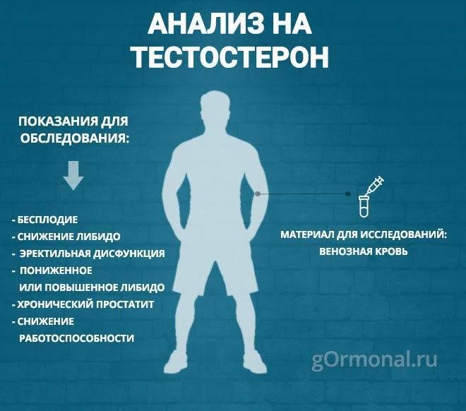 Как можно повысить тестостерон мужчине