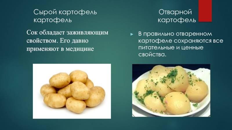 Калорийность жареной картошки