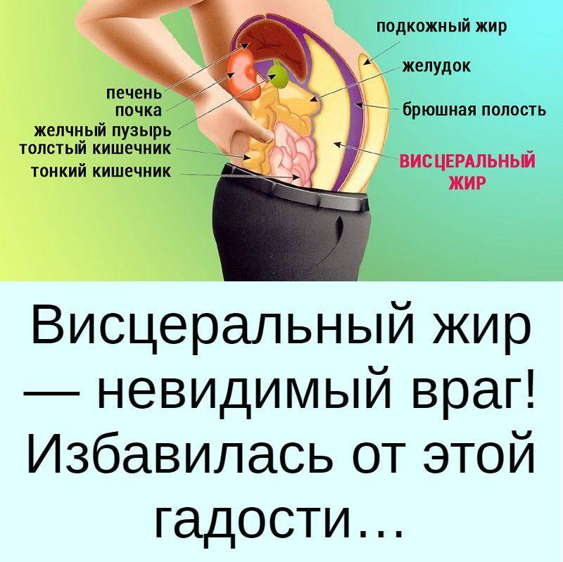Лишний вес: как узнать лишний жир в организме? | бомба тело