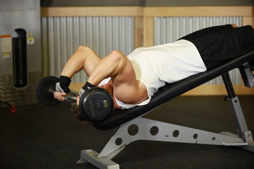 Жим штанги на наклонной скамье: видео и фото упражнения